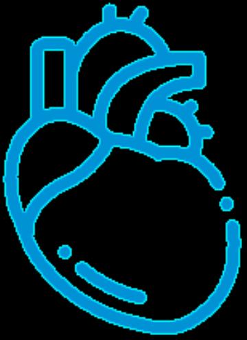 Cardiac & Vascular Surgery